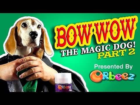 Orbeez Bow Wow Magic Dog Part 2 | Official Orbeez