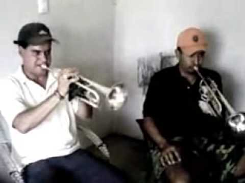 Son del Aserradero ( Zapotiltic) Mariachi Los Reyes del Aserradero