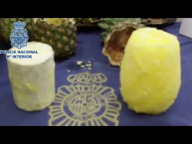 Pineapples filled with cocaine seized