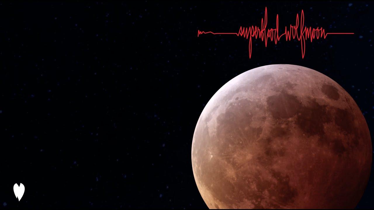 "Pearl Jam - ""Superblood Wolfmoon""の試聴音源を公開 新譜「Gigaton」2020年3月27日発売予定 thm Music info Clip"