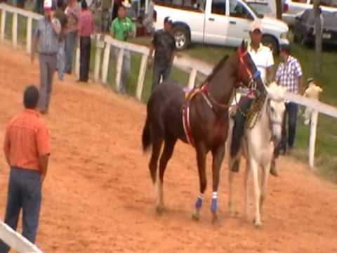 FINAL FUTURITY PURINA CHINAMECA 2010