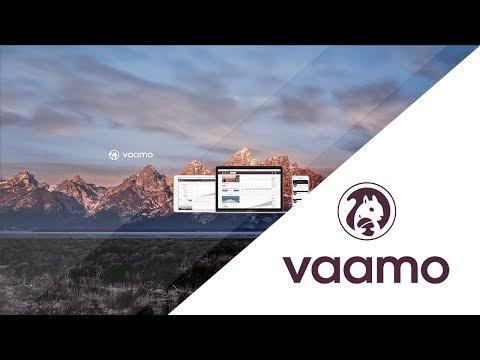 Das drastische Ende von Vaamo   Das Vaamo Investment Update #3