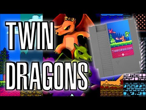 Twin Dragons HOMEBREW for NES   Review & Unboxing   Successfully Kickstarted Game   Rewind Mike