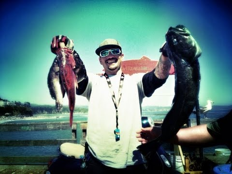 !!!! CAPITOLA ROCK COD FISHING !!!!