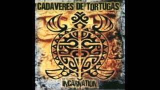 Watch Cadaveres De Tortugas Dial 666 video