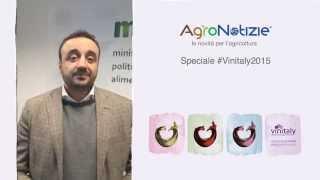 #Vinitaly2015 - Ricerca e economia agraria - Intervista