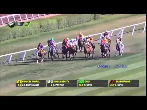 Vidéo de la course PMU PREMIO JIBACOA H.