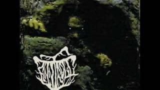 Watch Finntroll Blodnatt video