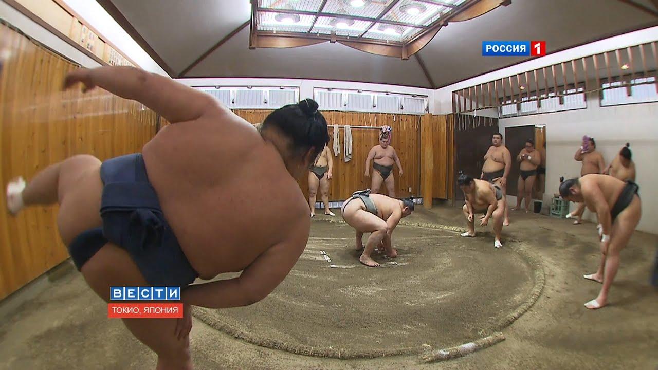 Толстые дерутся на ринге 18 фотография