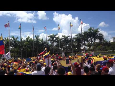 World Protest for a Free Venezuela #30MVamosTodos pt.2