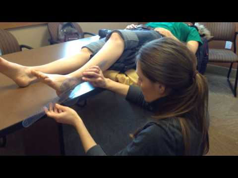 MMT and ROM of Ankle Dorsiflexion