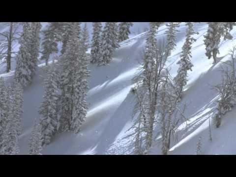 Blizzard - Solitude