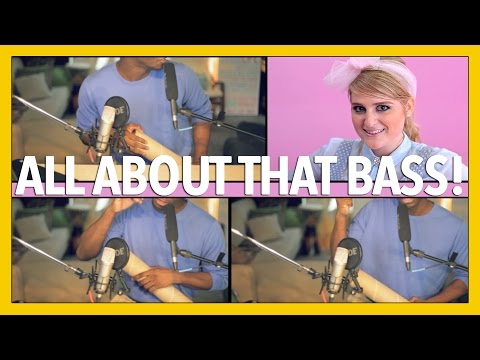 All About That Bass -  Meghan Trainor (dan Newbie Cover) video