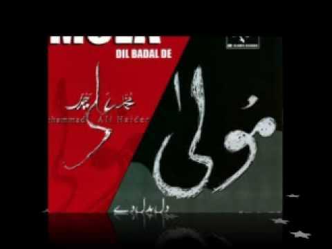 Mola Dil Badal de By Ali Haider
