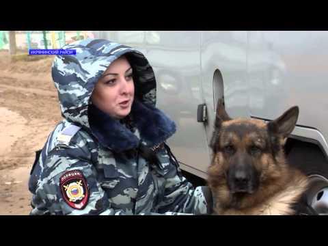 В Икрянинском районе Астраханской области полицейский пёс увеличил раскрываемость на 70 пунктов