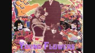 """The Pusher"" by Young Flowers (Denmark, 1969)"