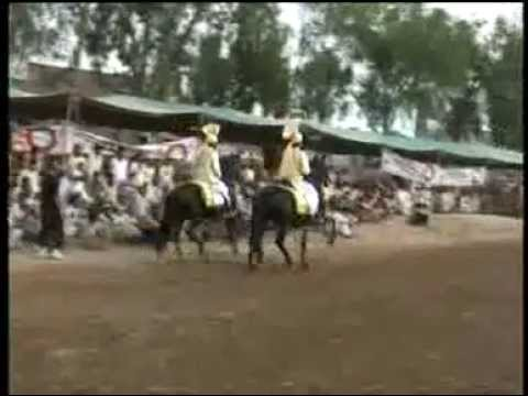 Sultania awan club ( horses Nageena & mastana) 25