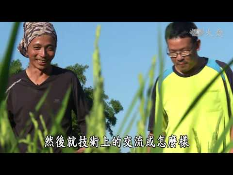 台綜-農夫與他的田-20190104 新雞隆的異鄉農