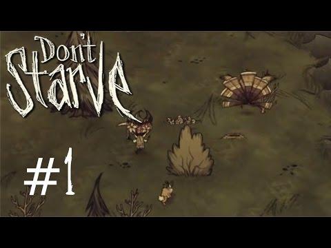 Don't Starve Deel 1: Kalkoen Fisting. video