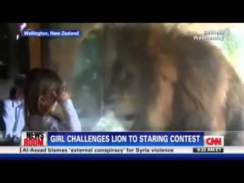 Little Girl Stares Down Lion