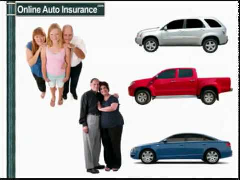 Florida no fault auto insurance Orlando's Three-star Pet-fri