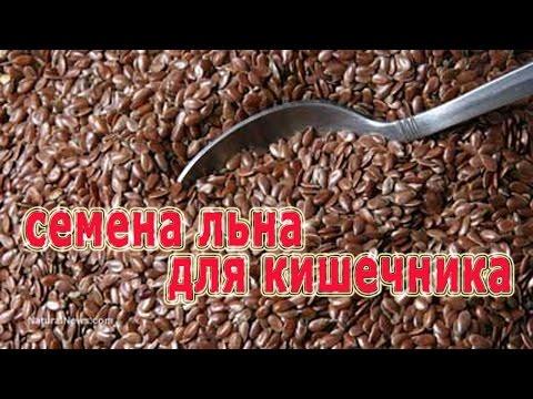 """Читать """"Тарас Бульба"""" - Гоголь Николай"""