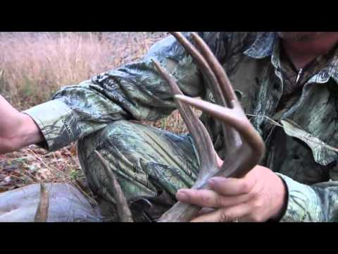 GLOCK Hunting | Whitetail Buck with a GLOCK
