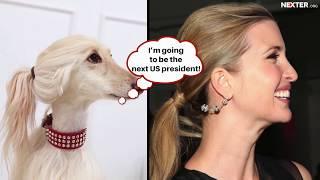 Ivanka Trump eats dog's food: best celebrities' dog-twins that confused whole world!