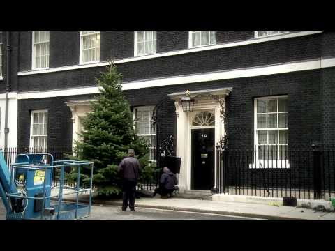 No.10 Downing Street's Christmas Tree timelapse video