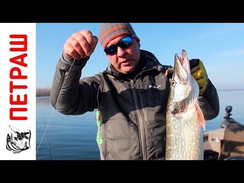 ловля окуня по весне держи спиннинг не без;  берега видео сверху микроджиг