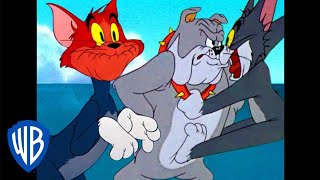 Tom y Jerry en Latino | Los gritos de Tom | WB Kids