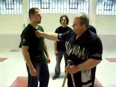 Mikhail Ryabko teaching Systema Punching Image 1
