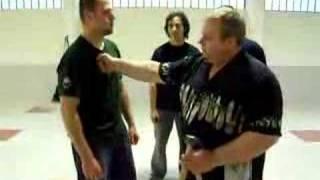 Mikhail Ryabko teaching Systema Punching