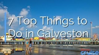 7 Top Things to Do in Galveston