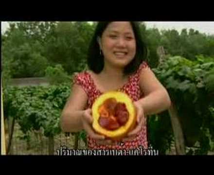 Fruit from Heaven G3 (Thai subtitle)