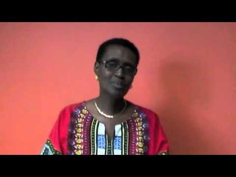 YALDA Presents the Intercollegiate Model African Union Summit (IMAUS) 2014!