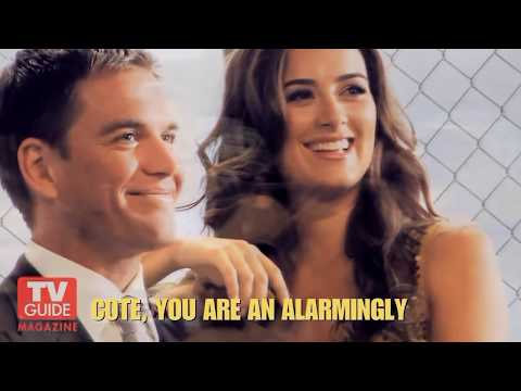 Cote de Pablo & Michael Weatherly | Sweet disposition