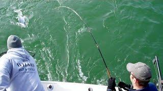 Sheboygan Charter Fishing Sheboygan WI - May 15, 2015