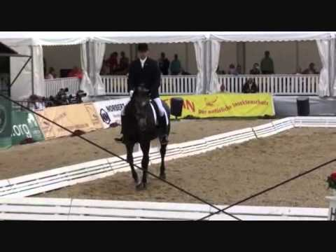 Toerveslettens Stamina - World Championships for Young Dressage Horses 2010