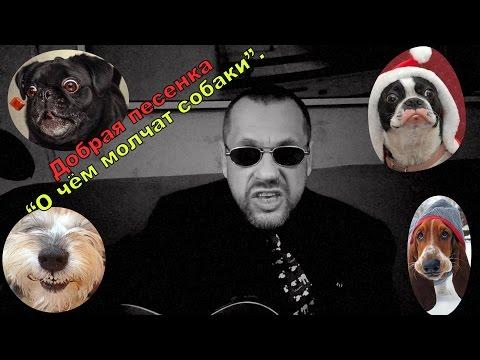 ПРИКОЛЫ ОЛАФА НА ГИТАРЕ добрая песенка О чем молчат собаки