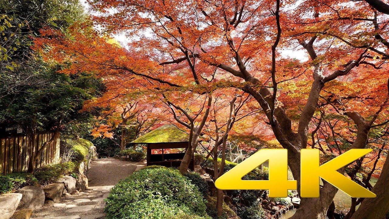 Tokyo garden wedding