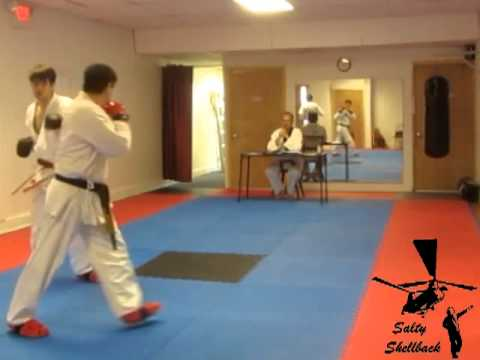 Progression of training: Tang Soo Do to Tae Kwon Do Image 1