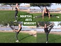 MARTIAL ARTS FITNESS TRAINING | 2018