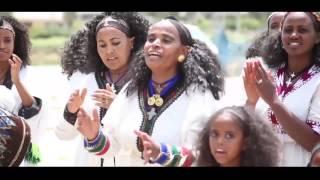 Mulu Gebrewahd - Ayniwari / New Ethiopian Music (Official Music Video)