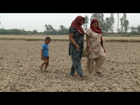 India s puny monsoon sparks fears of drought
