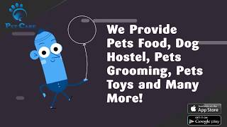 Pet Care - The service which make your pet feel like home