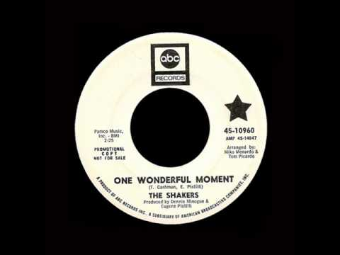 The Shakers - One Wonderful Moment