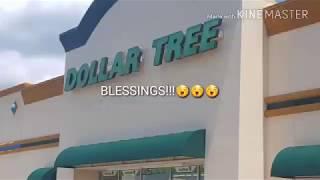 Sassy & Chic nails and La color nails Dollar Tree haul 9/3/17
