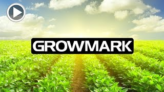 Grow Mark India Multi Trade Pvt. Ltd