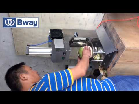 Download Bway Auto Coconut Cutter V3.0|coconut peeling machine